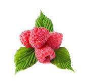 Heap of ripe raspberries — Stock Photo