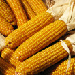 Sweet corn — Stock Photo #3161725