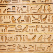 Old egypt hieroglyphs - Foto de Stock