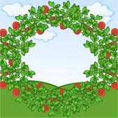 Apples frame — Stock Vector