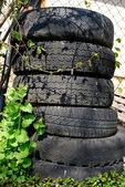 Tires — Foto Stock