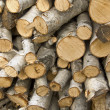 Stock Photo: Birch logs