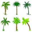 Stock Vector: Set of various palms