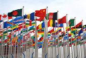 EXPO flags — Stock Photo