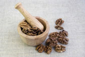 Mortar with walnuts — Stock Photo