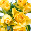 Bunch of yellow roses — ストック写真