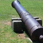 Antique gun — Stock Photo