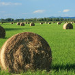 Bales — Stock Photo