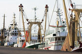 Fisher trawlers in harbor — Photo