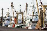 Trawlery fishera w porcie — Zdjęcie stockowe
