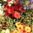 Stock Photo: Flower arrangement in different colors