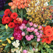 Flower arrangement in different colors - Stockfoto