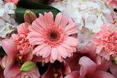 Mixed pink flower bouquet — Stock Photo