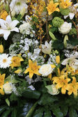 Yellow and white lilies — Stock Photo