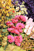 Flower arrangement in different colors — Stock Photo