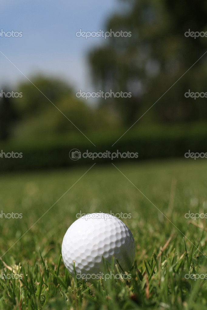 A golfball in the grass  Stock Photo #3257714