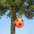 Dutch soccer decoration — Stock Photo #3385993