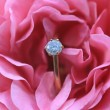 Stock Photo: Diamond engagement ring in a pink rose