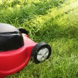 Lawnmower on green grass in sunny day — Stock Photo #3435478