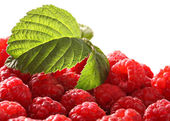 Raspberry on isolated — Stock Photo