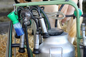 Milking machines — Stock Photo