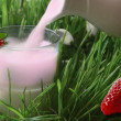 Strawberry milkshake — Stock Photo #2881369