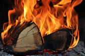 The wood burns on fire — Stock Photo