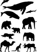 Wild animals. Silhouette vector collection — Stock Vector