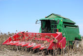 Combine on sunflower harvest — Stock Photo