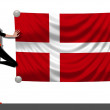 Girl with a Flag of Denmark — Stock Photo