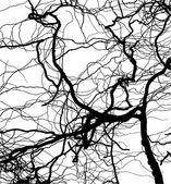 Wierd tree — Stock Vector