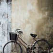 Bicycle and House Vietnam — Stock Photo #2723842