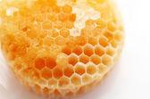 Miele biologico — Foto Stock
