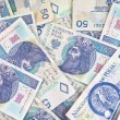 Polish money - Stock Photo