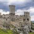 Old castle ruins in Poland in Europe — Stock Photo #3536852