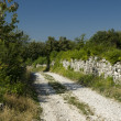 Road in Hum, Istria, Croatia — Stock Photo