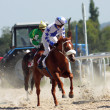 Horse racing. - Stock Photo