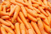 Close up of carrot — Stock Photo