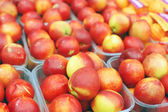 Close up of nectarines on market stand — Stock Photo