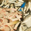 Stock Photo: Fresh fish for sale