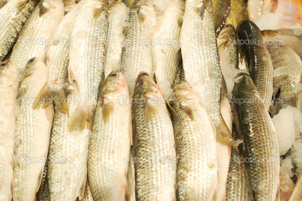 Fresh fish for sale on a market stand — Stock Photo #3066433