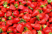 Close up of strawberry — Stockfoto