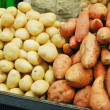 White and sweet potatoes — Stock Photo