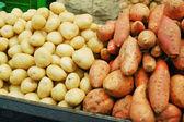 White and sweet potatoes — ストック写真