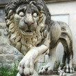 Lion from Pelesh Palas in Romania - Stockfoto