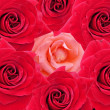 Stock Photo: Red roses texture