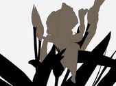 Abstract iris flower — Stock Vector