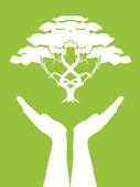 Manos cuidado árbol — Vector de stock