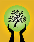 Human hands caring tree — Vector de stock