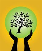 Menselijke handen zorgzame boom — Stockvector